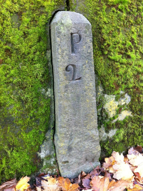 Mossy P2 embedded in the retaining wall of Lone Fir Cemetery.
