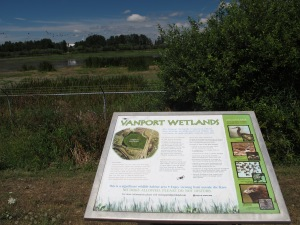 Plaque talks about the birds and animals that now live on this protected wetland