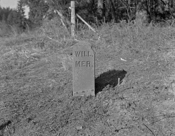 Willamette Stone reading WILL MER