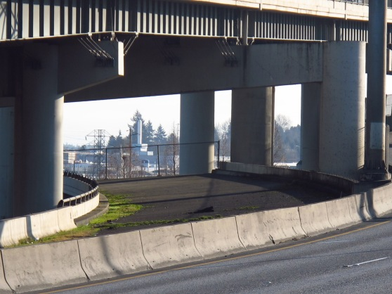 This is the view from the Marquam bridge of the Ghost ramp that hangs out over the OMSI parking lot.  The ramp that would have made the connection to Mt. Hood Freeway and sliced through the SE neighborhood just like I5 north wiped out Minnesota Ave in N. Portland.
