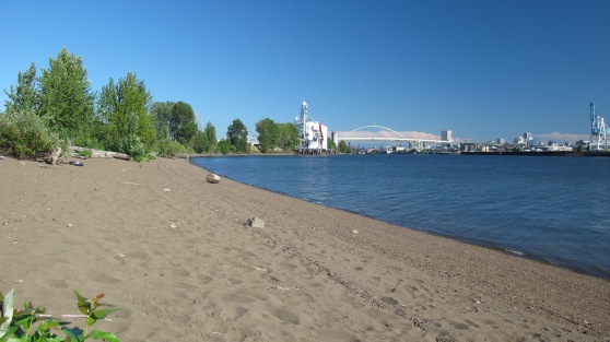 A sandy beach with a great view of the Fremont Bridge.