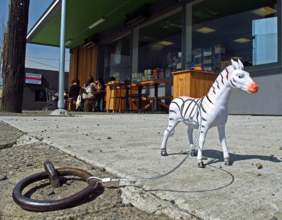 The Green Zebra on N. Lombard