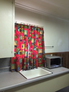 Same curtains today, kitchen